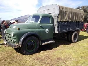 camiones28