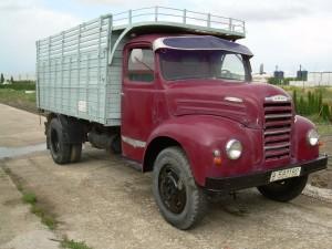 camiones41