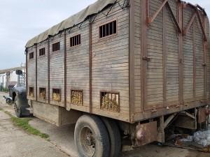 camiones31