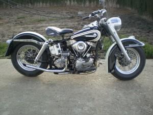 motos41